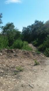 Tanah Dijual Pantura - Flores Labuan Bajo #1