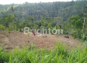 Tanah Dijual Bangli Bangli #1