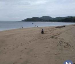 Tanah Lombok Tengah Pinggir Pantai Di Mertak T558 #1