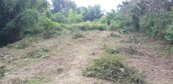 Dijual Tanah Daerah Oro Oro Ombo, Batu. Jawa Timur #1