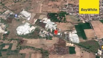 Dijual Tanah Zona Industri Di Nol Jalan Raya Babat Tuban, Jawa Timur #1
