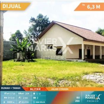 Rumah Jalan Cemara Kota Blitar #1