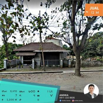 Gudang Penggergajian Kayu Aktif Di Pinggir Jalan Provinsi Banyuwangi #1