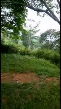 Tanah Murah Jual Cepat Sentul, Bogor #1