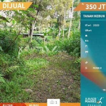 Tanah Kebun Paling Strategis Di Wlingi Blitar #1