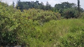 Dijual Tanah Cocok Untuk Cluster Di Jalan Bojongkoneng Bandung Utara #1