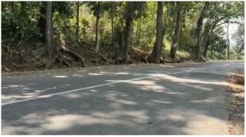 Tanah Produktif 6 Ha Lokasi Cikembar Sukabumi #1