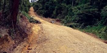 Dijual Cepat Tanah Kebun Dengan Luas 10 Ribu Hektar Daerah Muara Komam Paser Kalimantan Timur #1