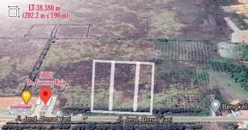Tanah Raya A.yani Km. 21 Tanah Laut Bati Bati Kalsel #1