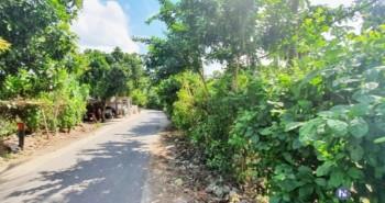 Dijual Tanah Kavling Pinggir Jalan Di Kuripan Lombok Barat #1