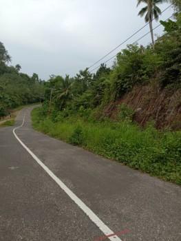Dijual Murah Lahan Perkebunan 55ha Lokasi  Sangat Strategis Pinggirr Jalan Trans Temboan Langowan Timur Sulawesi Utara #1