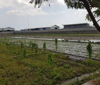 Dijual Tanah Kawasan Industri Pilangkenceng Madiun Ngawi-caruban #1