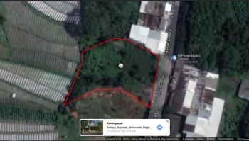 Tanah Tanpa Perantara Di Jalan Kertek Sapuran Wonosobo #1