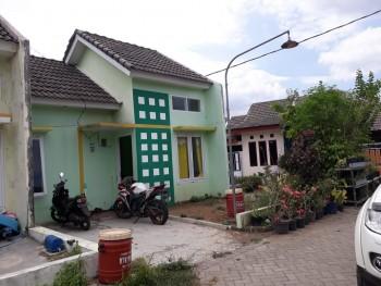 Rumah Tinggal Bangil Pasuruan #1