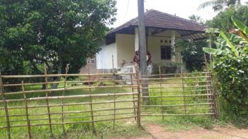 Tanah Istimewa Di Kel, Kubang Kac. Petir #1