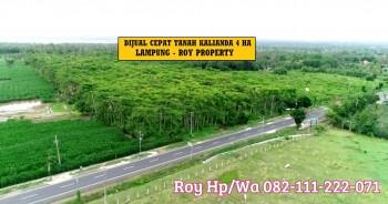 Dijual Tanah Kalianda Lampung Selatan 4 Ha Dekat Tol Kaliandan Dan Gor Wayhandak Turun Harga #1