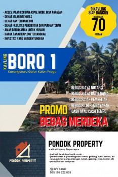 Tanah Kavling Prospektif Terjangkau Di Kulonprogo Yogyakarta #1