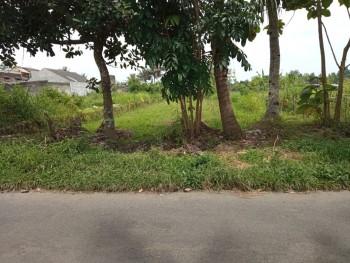 Jual Cepat Tanah Kosong, Dekat Perumahan Janabadra Asri, Lingkungan Aman Nyaman #1