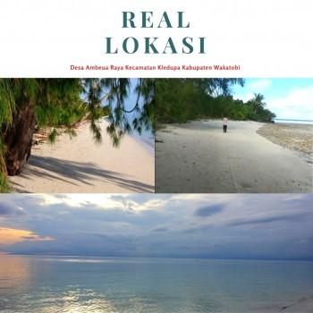 Dijual Tanah Di Pinggir Pantai Pulau Hoga Kec. Kaledupa Kab. Wakatobi Sulawesi Tenggara #1